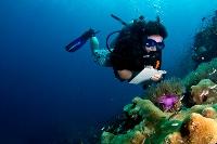 Meeresschutz Thailand