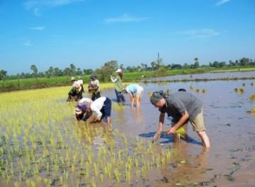 Bei-den-Bauern-am-Tonle-Sap