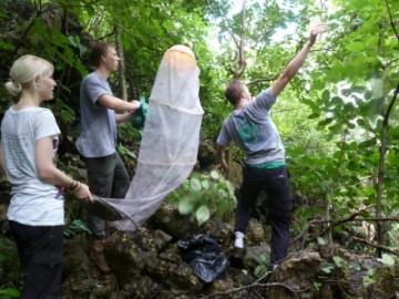 Freiwillige-im-Nationalpark-360x270