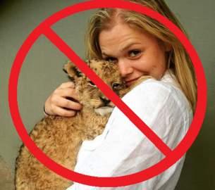 Freiwillige mit Löwenbaby auf dem Arm